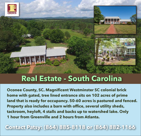 South Carolina Homes for Sale Sitemap  REMAX