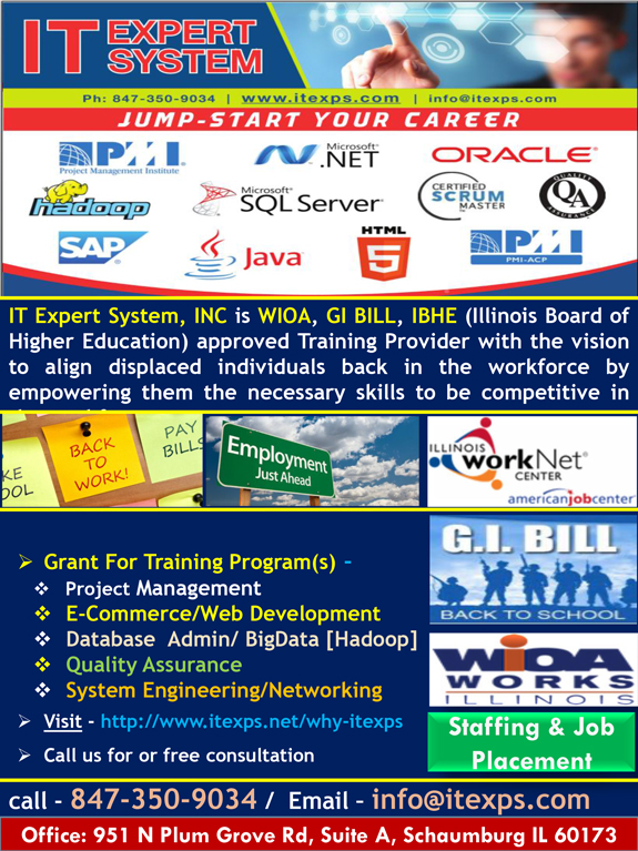 IT Expert System Inc