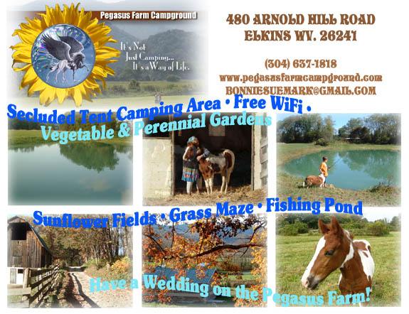 Pegasus Farm Campground