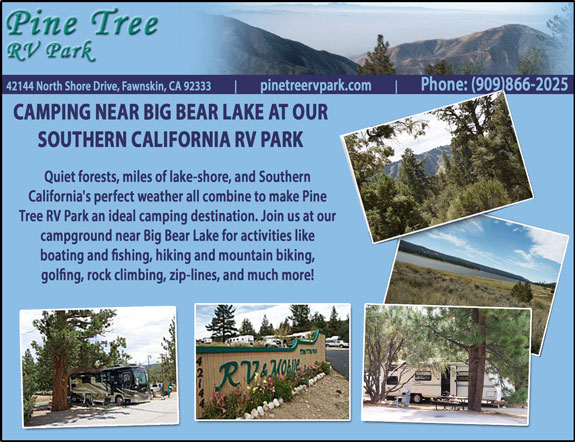 Pine Tree RV Resort