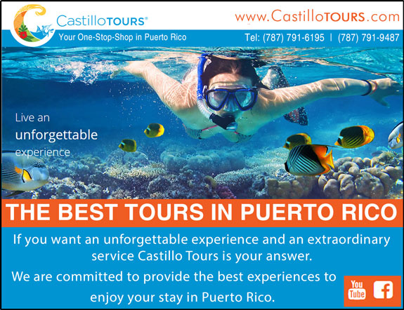 Castillo Tours