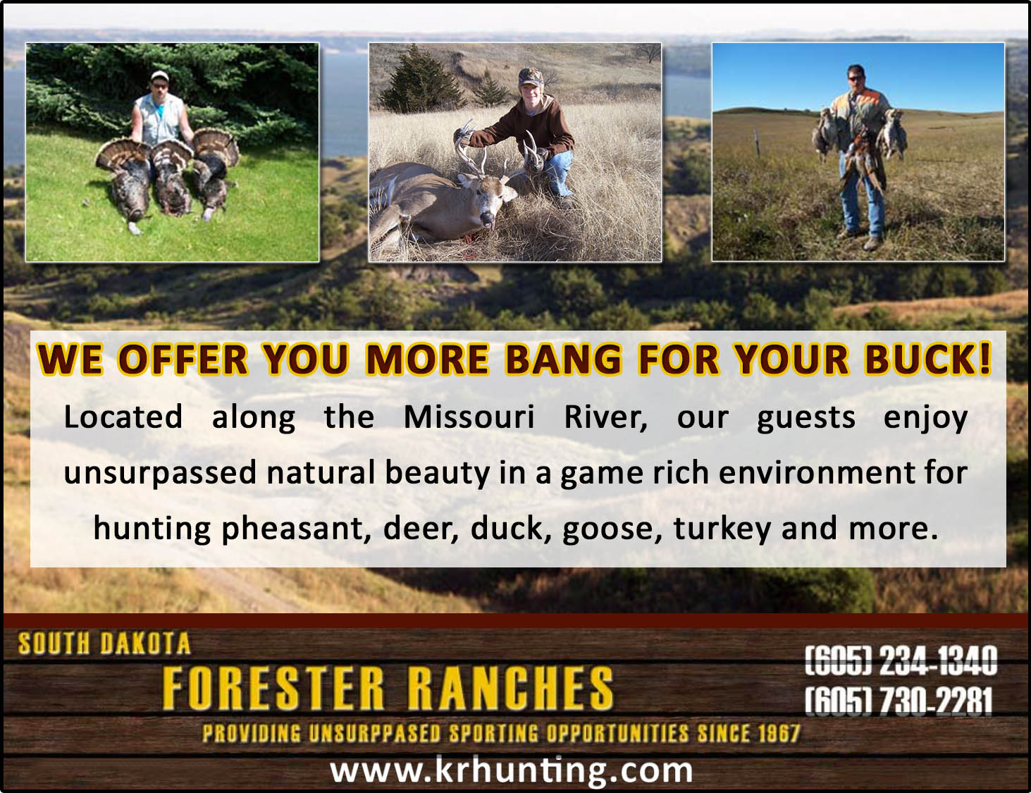 Forester Ranches