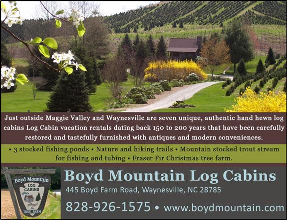 Boyd Mountain Log Cabin