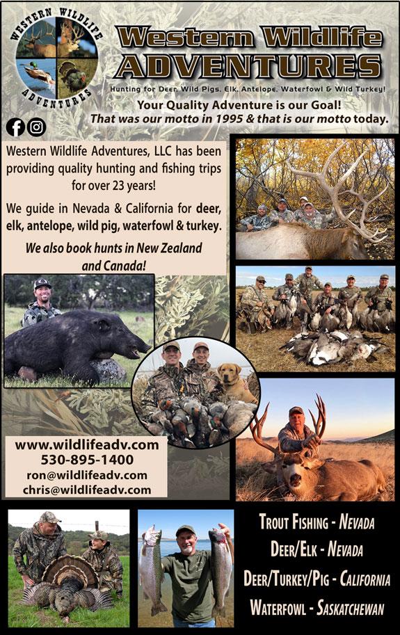 Western Wild Life