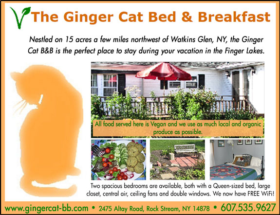 Ginger Cat Bed and Breakfast