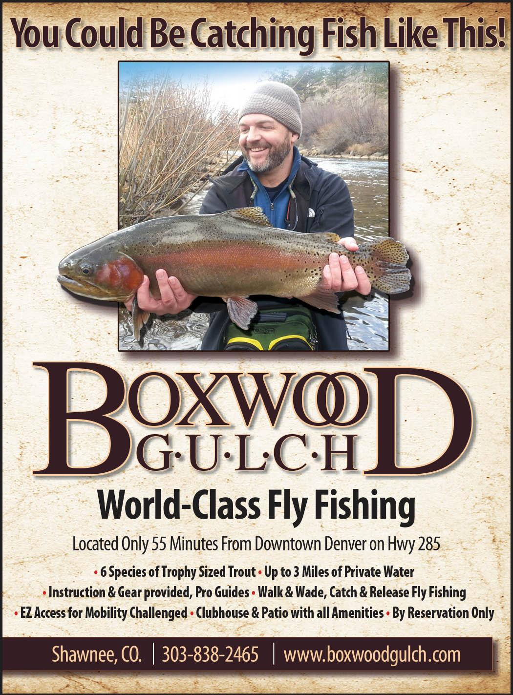 Boxwood Gulch