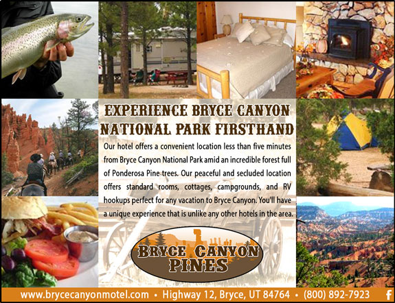 Bryce Canyon Pines