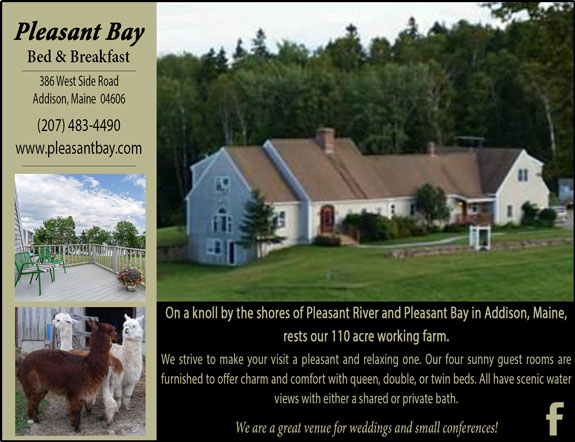 Pleasant Bay Bed and Breakfast