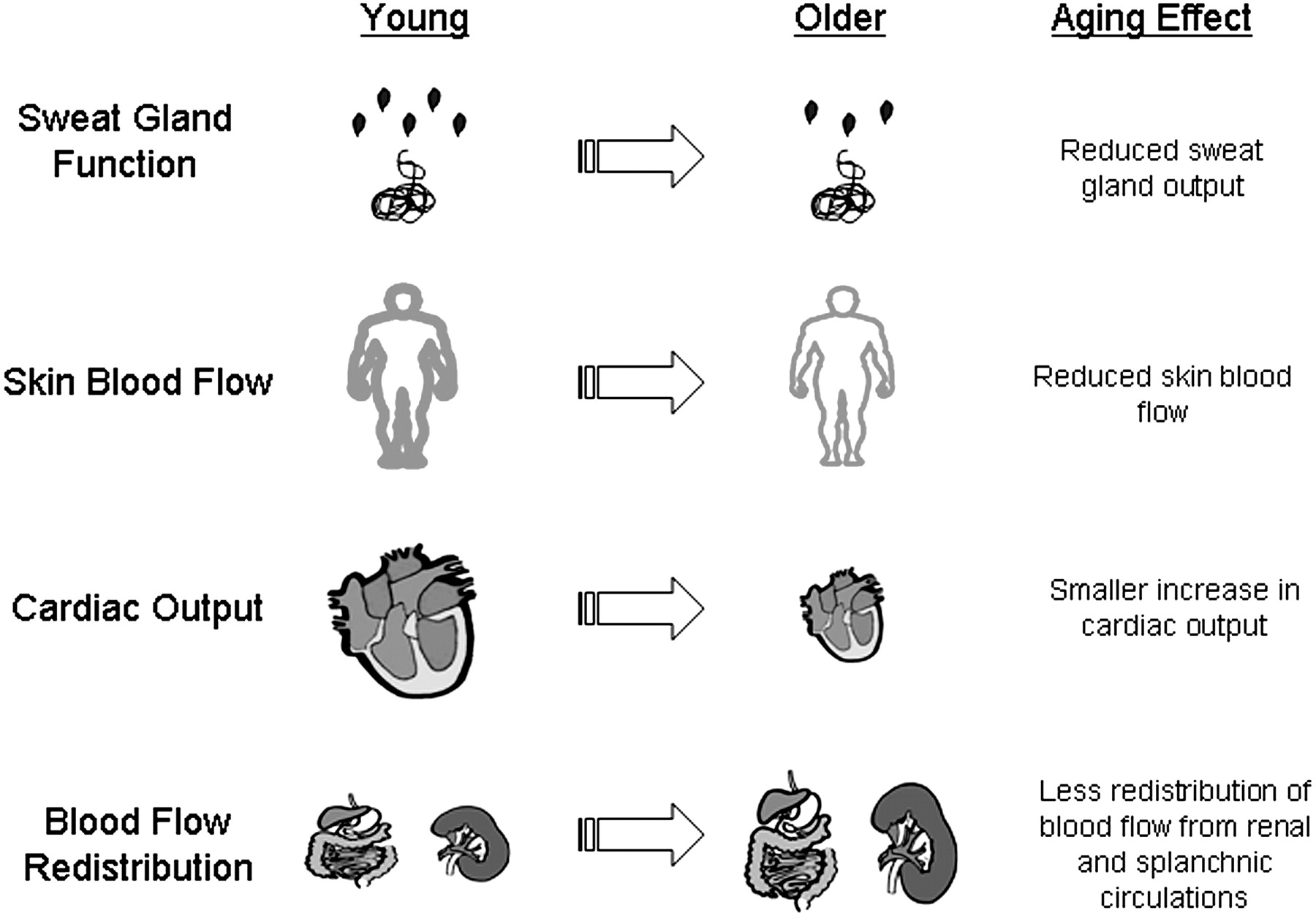 the environmental effects of exercise Enjoyment of exercise expectation of benefits do attributes in the physical environment influence children's physical activity a review of the literature.